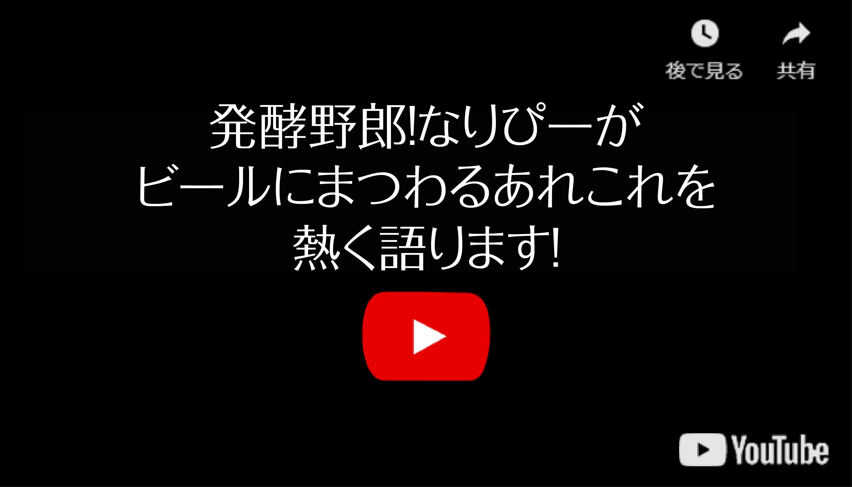 YouTubeなりぴーチャンネル